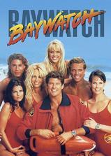 海滩救护队 第二季海报