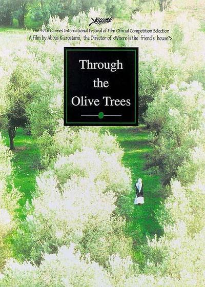 橄榄树下的情人海报