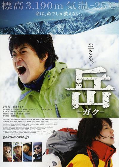 岳:冰峰救援海报