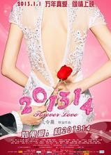 201314海报