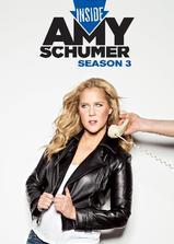 艾米·舒默的内心世界 第三季海报