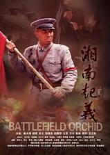湘南起义海报