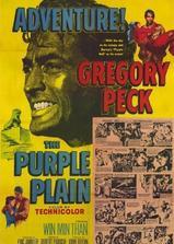 紫色平原海报