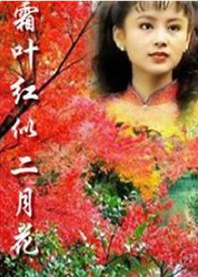 霜叶红似二月花海报
