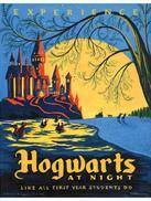 当哈利离别霍格沃茨