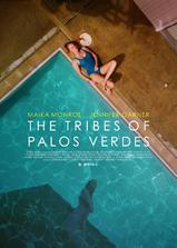 帕洛斯弗迪斯的部落海报