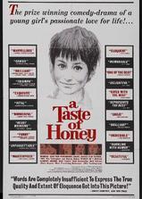 蜜的滋味海报