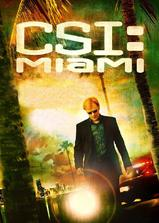 犯罪现场调查:迈阿密 第六季海报