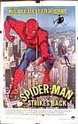 蜘蛛人打击恶徒海报