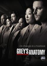 实习医生格蕾  第七季海报