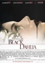 黑色大丽花海报
