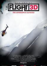 飞翔的艺术海报