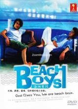沙滩男孩海报