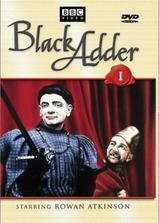 黑爵士一世海报