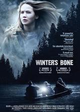 冬天的骨头海报