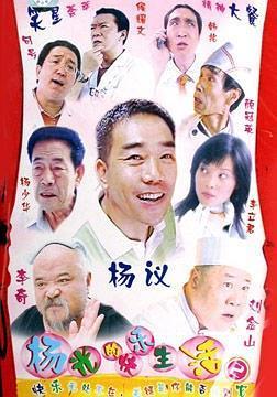 杨光的快乐生活2海报
