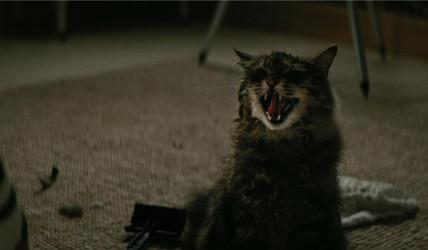《宠物坟场》不只是恐怖片那么简单 深入解读宠物坟场