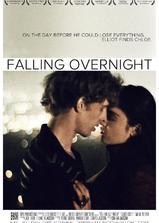 一夜钟情海报