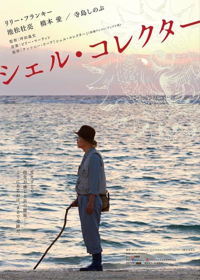 贝壳收藏家海报