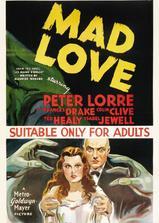 疯狂之爱海报