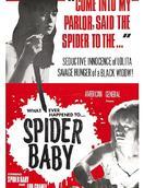 蜘蛛宝宝,或你所听说过最疯狂的故事