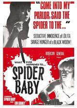 蜘蛛宝宝,或你所听说过最疯狂的故事海报