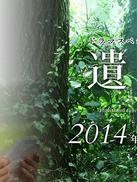 遗留捜査 2014特别篇