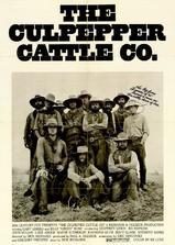 牛仔路漫漫海报
