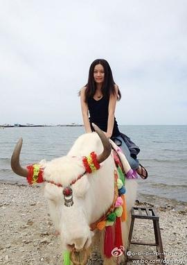 杜晓雨 Xiaoyu Du演员