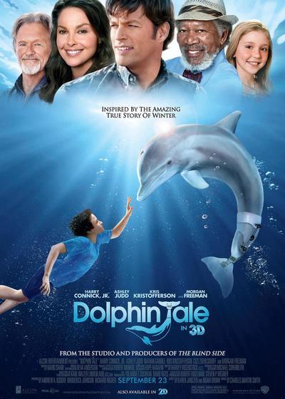 海豚的故事海报