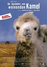 哭泣的骆驼海报