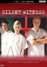 无声的证言 第十五季海报