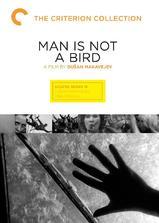 男人非鸟海报