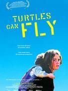 乌龟也会飞