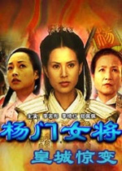 杨门女将之皇城惊变海报