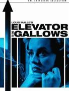通往绞刑架的电梯