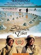 西藏:盐程万里