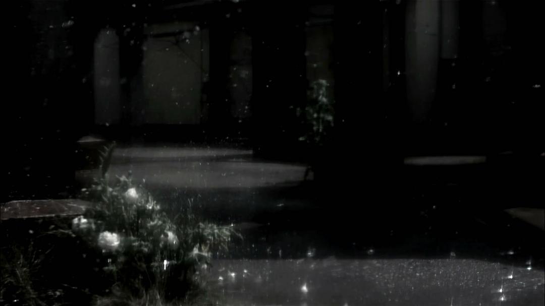神秘影片试验计划#13 营火