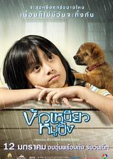 小犬与女孩海报