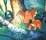 毛富利,世界上最后一只树袋熊