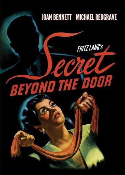 门后的秘密海报