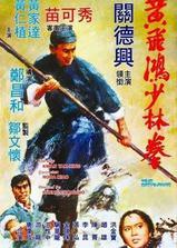 黄飞鸿少林拳海报