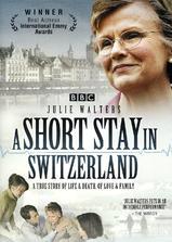 在瑞士的日子海报