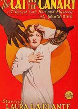 猫和金丝雀海报