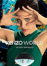 凯卓世界海报