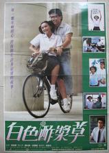 白色酢浆草海报