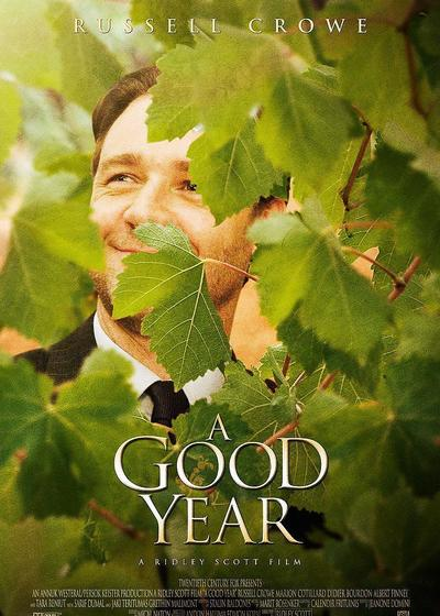 美好的一年海报