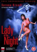 夫人夜海报