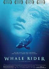 鲸骑士海报