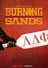 燃烧的沙漠海报